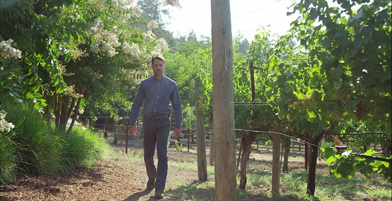 Neil Bernardi walking in the vineyards