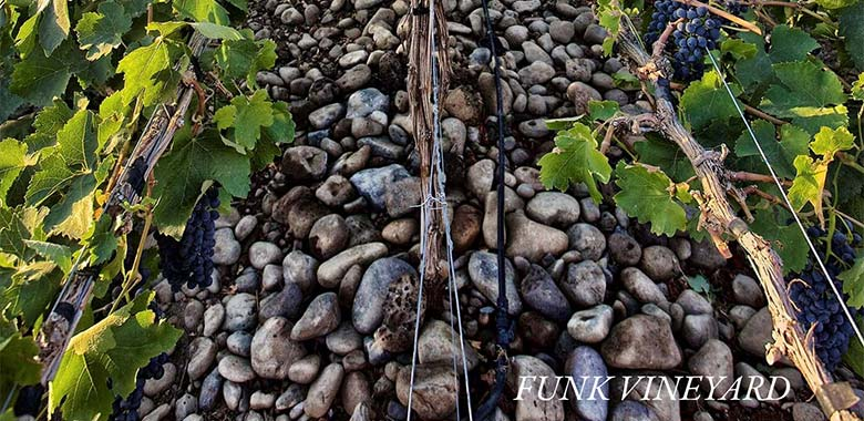 Funk vineyard soil