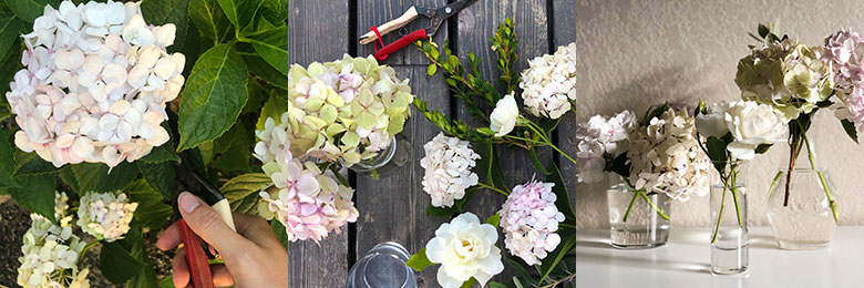 How to make your own bouquet