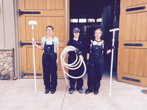 Three Rookie Paraduxx Interns