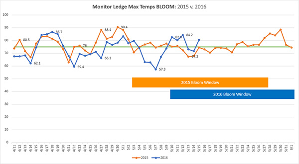 Monitor Ledge Bloom