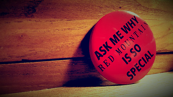 Taste of Washington