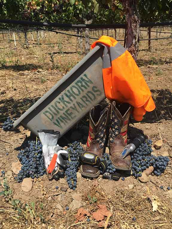Vineyard Tools