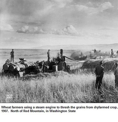 Red Mountain farming