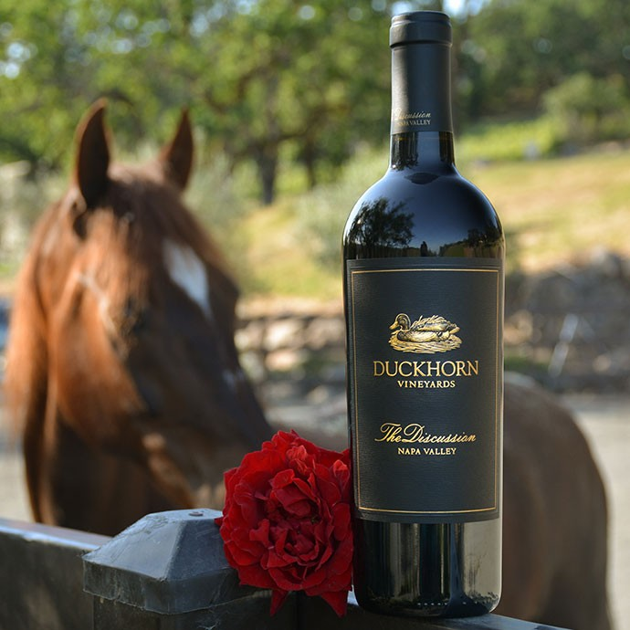 The Discussion bottle in front of a horse