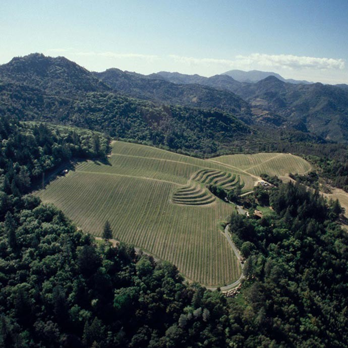 Aerial image of Howell Mountain and location of our Stout Vineyard