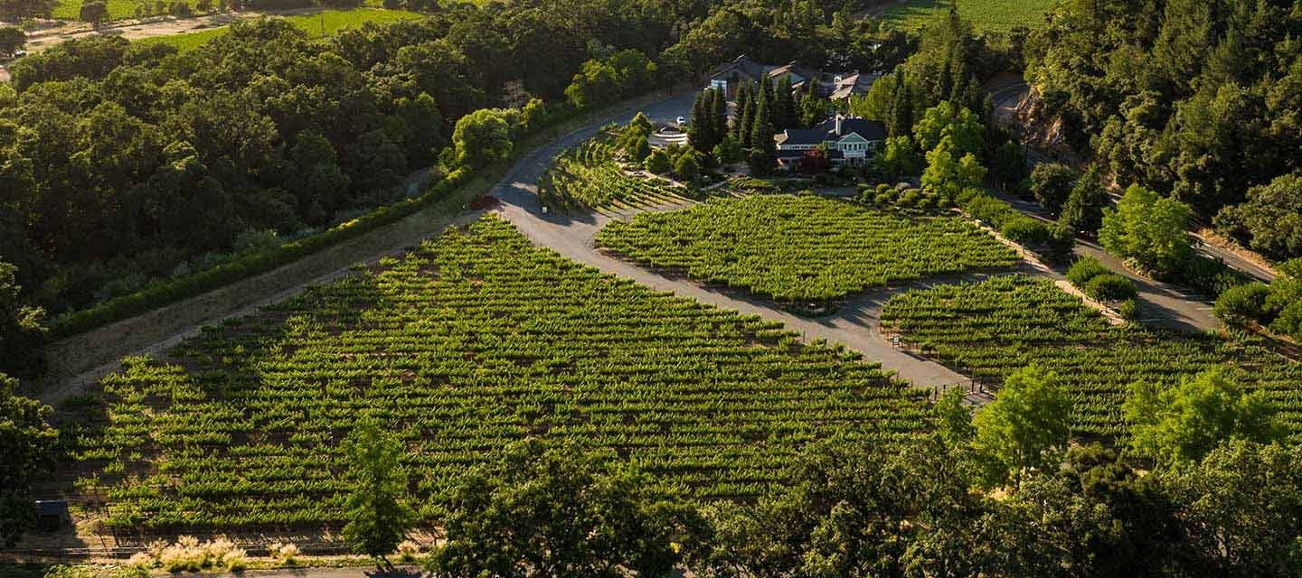 Duckhorn Marlee's Vineyard Feature Image
